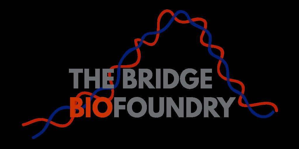 The Bridge Biofoundry